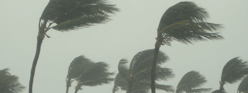 How to Prepare Your Florida Home for Hurricane Season