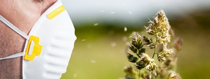 How to Fight Allergy Season in Florida Using Your HVAC System