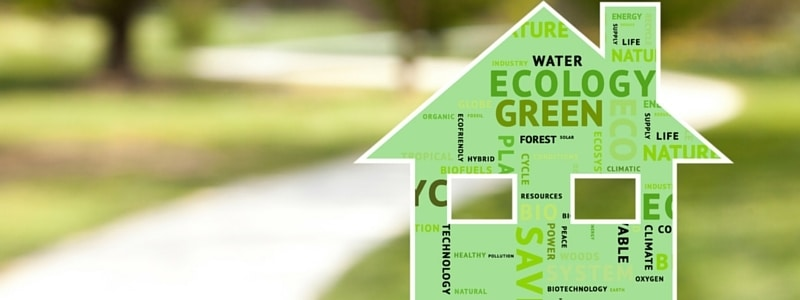 St. Patrick's Day Guide to Turning Your Home Green